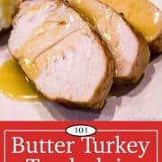 graphic for pinterest for turkey tenderloin