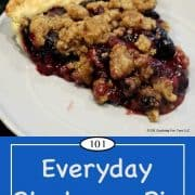 Pinterest image of blueberry pie