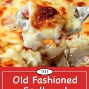 graphic for Pinterest of scalloped potatoes and ham