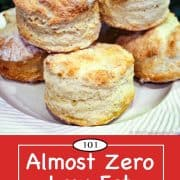 Graphic for Pinterest of almost zero low fat biscuits